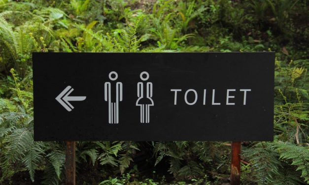 L'eau de pluie pour les toilettes : un geste écologique