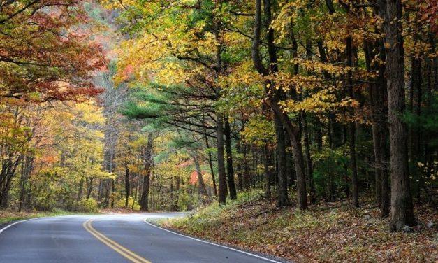 Voyager en automne avec un camping-car : la nouvelle tendance